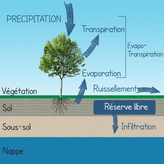 Très Les flux d'eaux dans le sol ER33