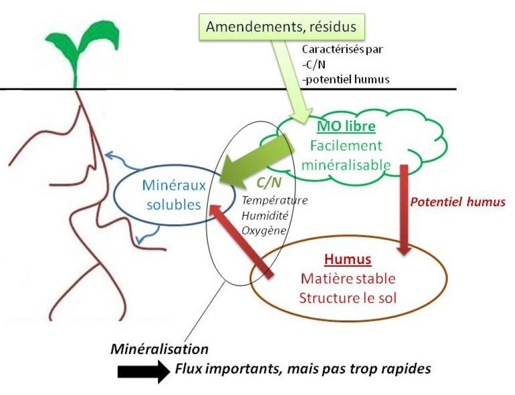 La matière organique - Qualités et dynamique des MO