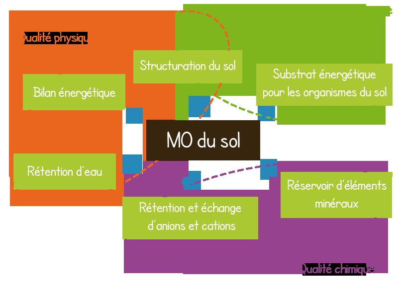 Importance de la mati re organique du sol - Remontee d humidite par le sol ...