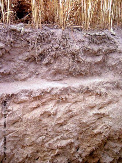 dessiccation des sols
