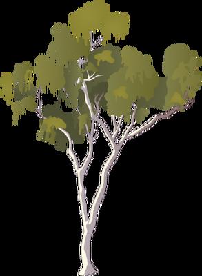 Index Of Ressources Tice Ress Tice 1 Partage Visuel Ian Symbols Flora Trees Shrubs Vines